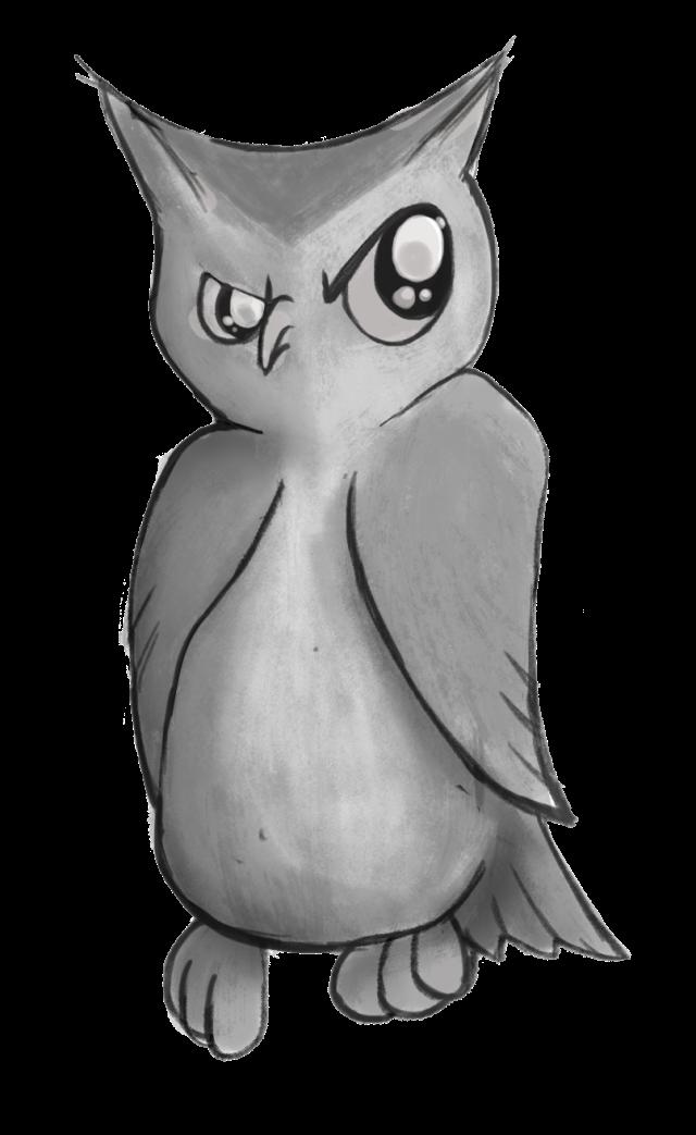 A suspicious owl