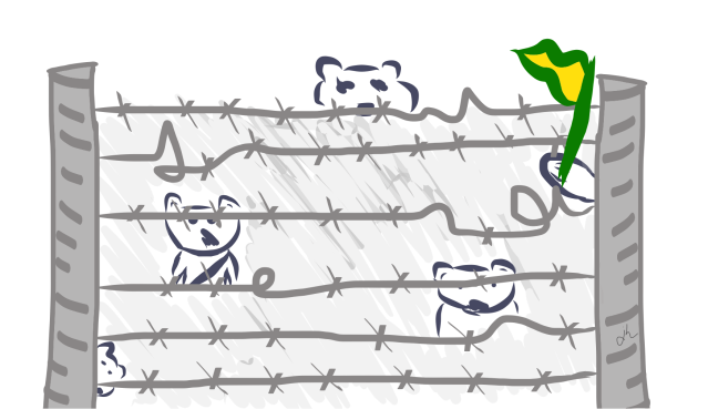 Cartoon wombat barricade, made from barbed wire. One wombat is waving a flag in Australian green and gold.