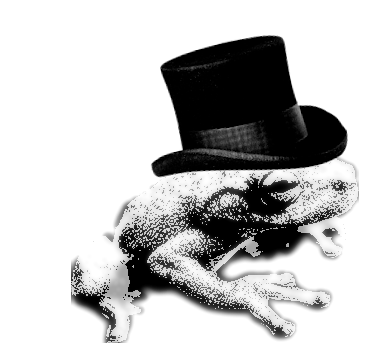 Small tree frog wearing a top hat