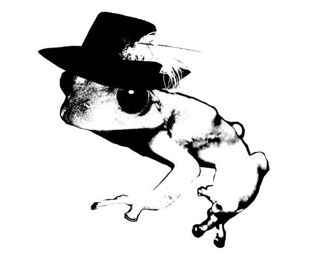 Small tree frog wearing a hat with a feather