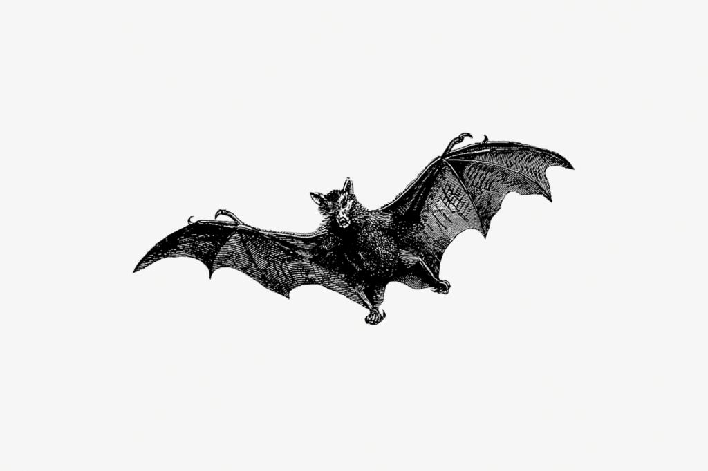 Etching style flying bat